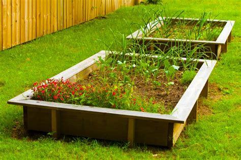 raised beds grow  popularity farm flavor