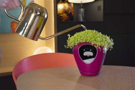 luea smart planter transforms houseplants  virtual pet