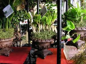 indoor plants arrangement ideas foundation dezin decor go green indoor landscaping