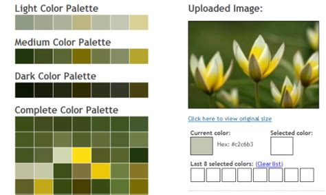 color palette generator from image 25 color combination tools for designers pro design