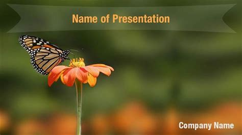 butterfly powerpoint template monarch butterfly powerpoint templates monarch butterfly
