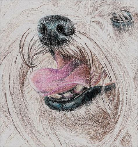 drawing with colored pencils drawing a haired with colored pencils part 2
