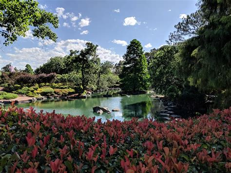 Auburn Botanic Garden Auburn Botanic Gardens With Japanese Gardens In Sydney The Kid List