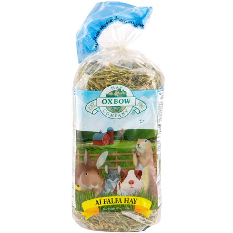 Alfalfa Hay Oxbow oxbow alfalfa hay by oxbow 1010260 at petworldshop