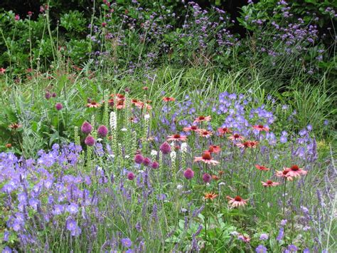 Planting A Perennial Flower Garden Choosing Cutting Garden Plants Home Flower Garden