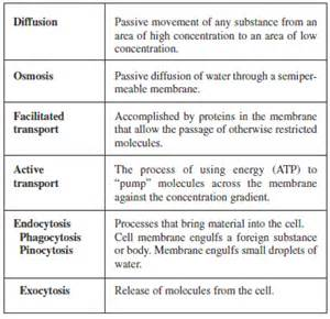Cell labeling practice answers in addition label body parts worksheets