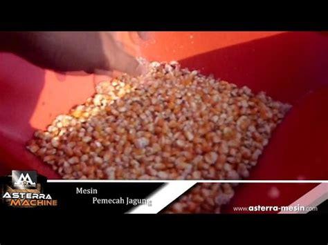Jagung Giling Pakan Ternak mesin pemecah jagung penggiling jagung pakan ternak ayam