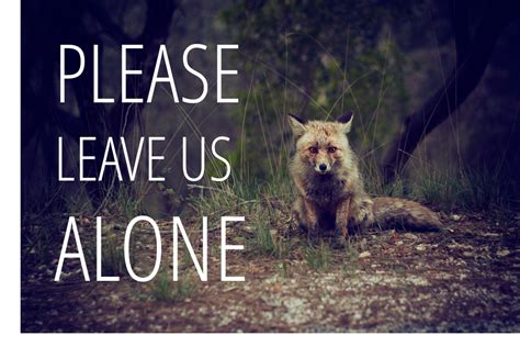 Leave Us Alone by Leave Us Alone Wildlife Tips Winter Park Lodging Company