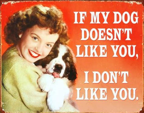i dont like dogs if my doesn t like you i don t like you tin sign at allposters