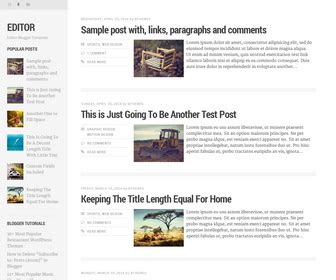 editor blogger template newbloggerthemes com