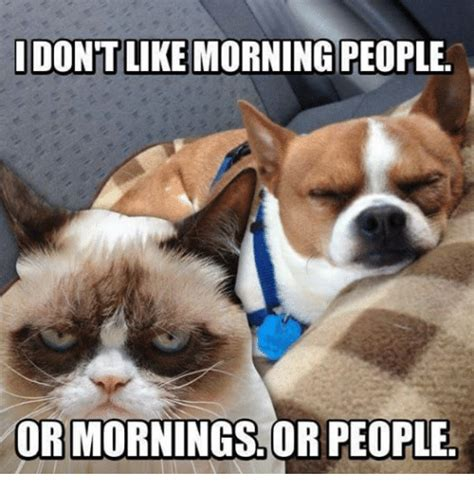 Morning People Meme - idontlike morning people or mornings or people grumpy