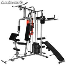 gimnasio en casa multifuncional bodytone banco de musculacion dorsales pectorales bicep etc