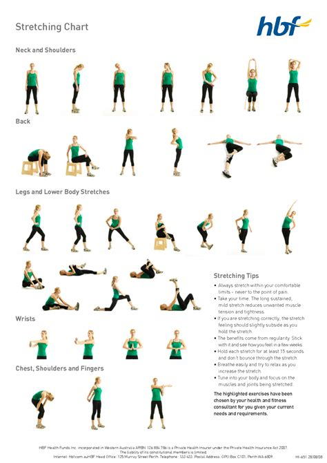 printable flexibility exercises basic stretches diagram workout tip 2 fit bit
