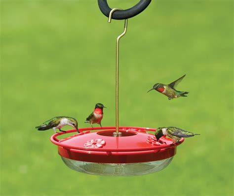 Hummingbird Feeder Images aspects hummzinger highview as429 hummzinger hummingbird