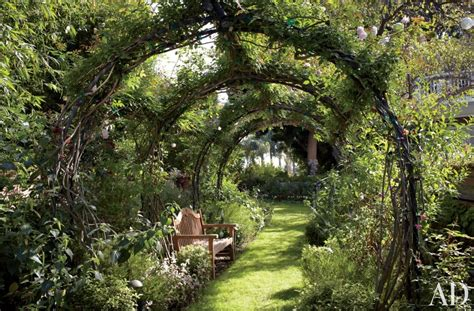 backyard vines backyard ideas betterdecoratingbible