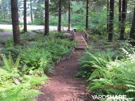 landscaping ideas gt forest gardening part ii yardshare com