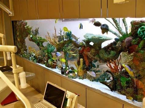 aquarium design los angeles custom aquariums and saltwater fish los angeles youtube