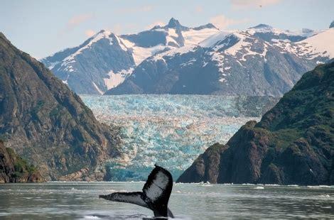 alaskas glaciers    passage haa travels