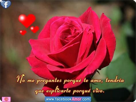 bonitas de rosas rojas con frases de amor imagenes de amor facebook image imagenes de rosa rojas con frase amor im genes
