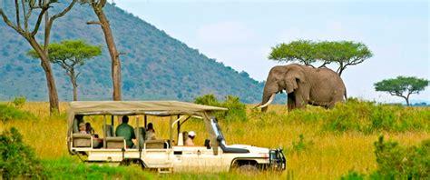 Syari Kanita safari kenia de mooiste safari s bij keniaspecialist