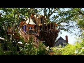 the build bird nest tree treehouse masters