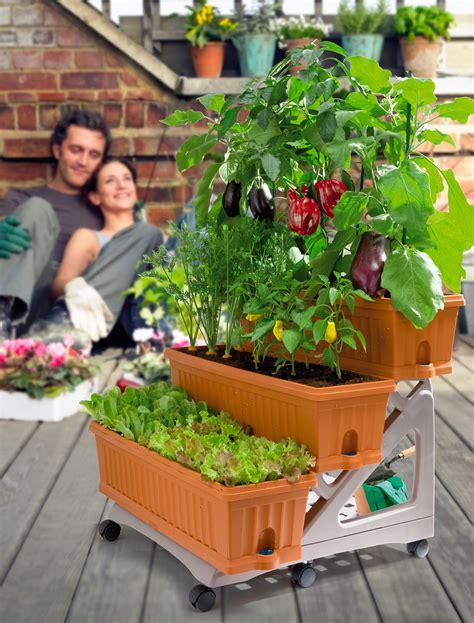 l orto in terrazzo fare l orto in giardino con le corbusier tetto giardino