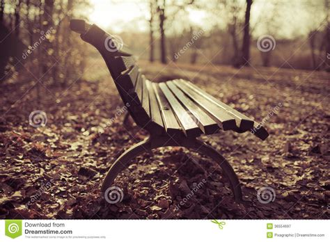 bench scene bench autumn scene royalty free stock photography image 36554697