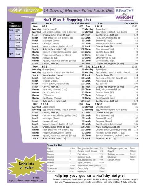 printable diets lose weight 1000 calories 14 day paleo diet with shoppong list
