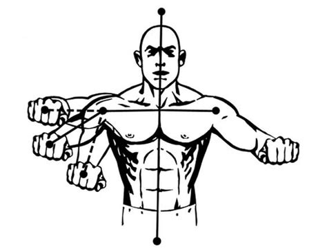 bench press shoulder position the ultimate chest workout chest exercises for awesome pecs muscle for life