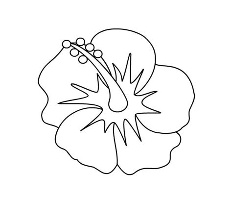 printable hibiscus flowers hibiscus coloring page state flower embroidery