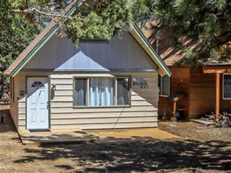 Big Friendly Cabins by Big Cabins Big Lake Cabin Rentals Pet