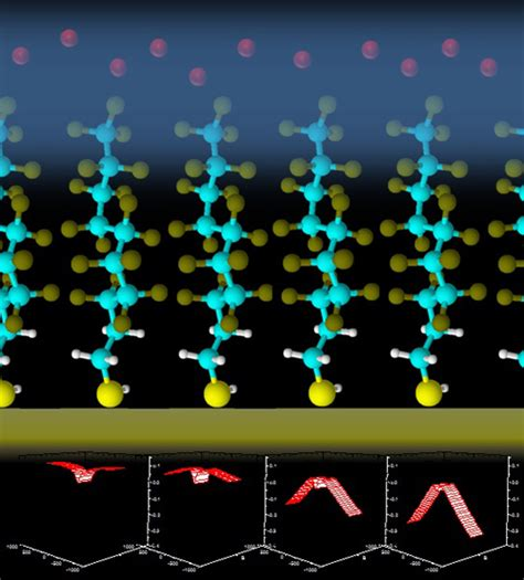 an organic light emitting diode with field effect electron transport manipulating magnetic field effects in organic semiconductors