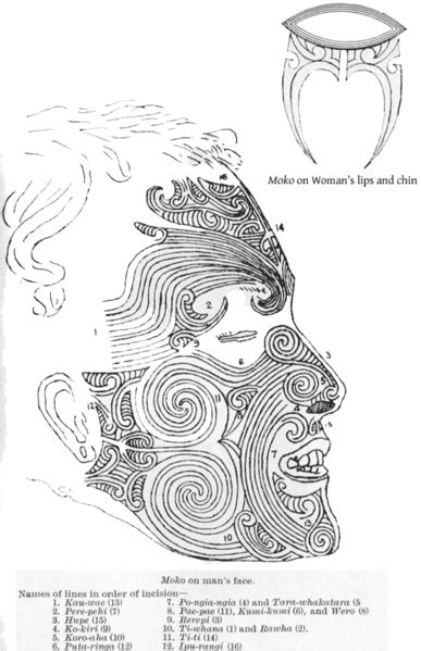 the tattoo history source book pdf teachartwiki maori moko tattoos