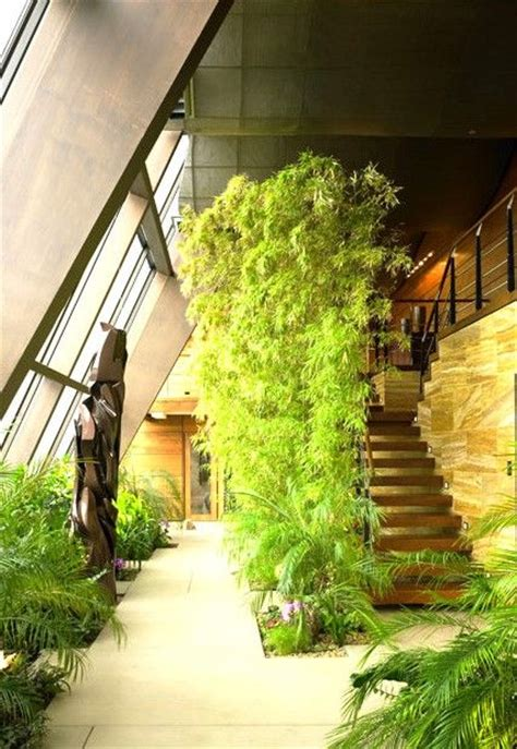 indoor landscaping 25 best ideas about inside garden on pinterest small
