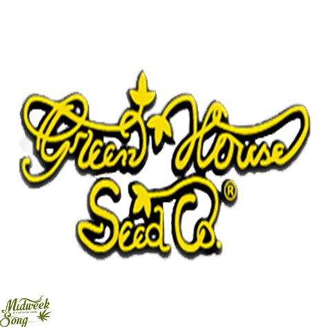 green house seed co green house seeds buy your marijuana seeds here midweek song us