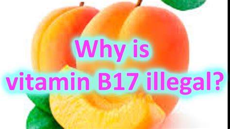 Vitamin B17 Why Is Vitamin B17 Illegal Does B17 Really Cure Cancer