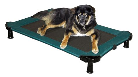 dog cot bed beautiful cot dog bed extra large dog cot bed dog beds dog