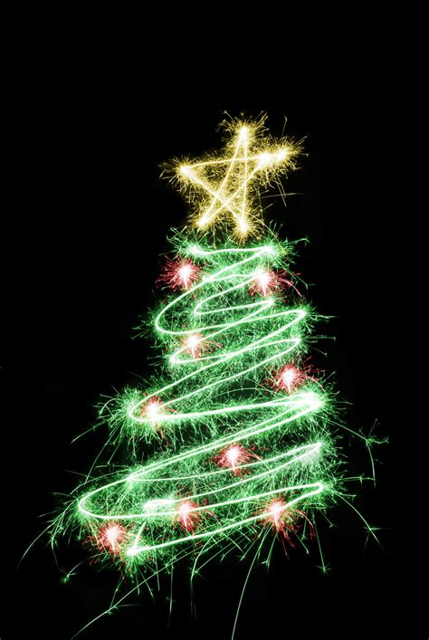 sparkle tree free stock photo 1453 sparking tree freeimageslive