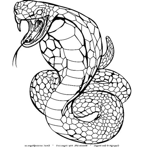 free coloring pages king cobra king cobra coloring download king cobra coloring