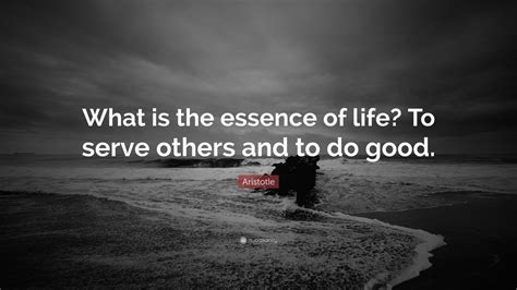 aristotle quote    essence  life  serve     good  wallpapers