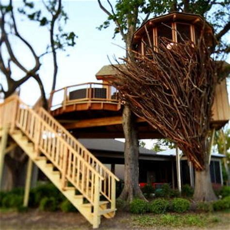Animal Planet Treehouse Giveaway - behind the build bird nest tree treehouse masters animal planet