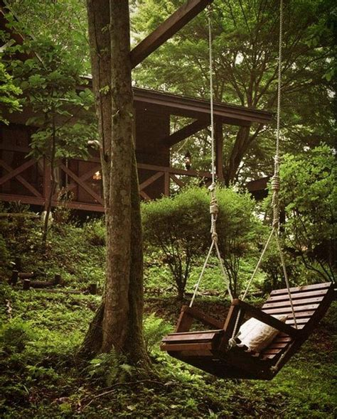 forest swing a magical swing in the middle of the forest a dream come