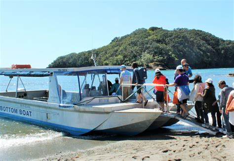 glass bottom boat trip goat island glass bottom boat grabone nz