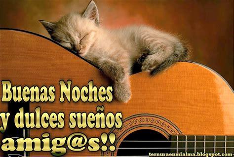 imagenes buenas noches de gatitos tiernos gatitos para decir buenas noches