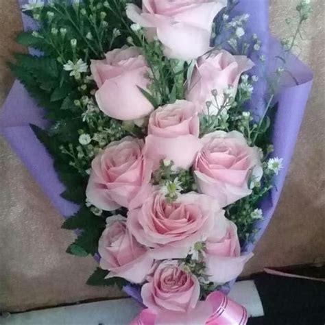 gambar bunga mawar asli kumpulan gambar menarik kualitas hd