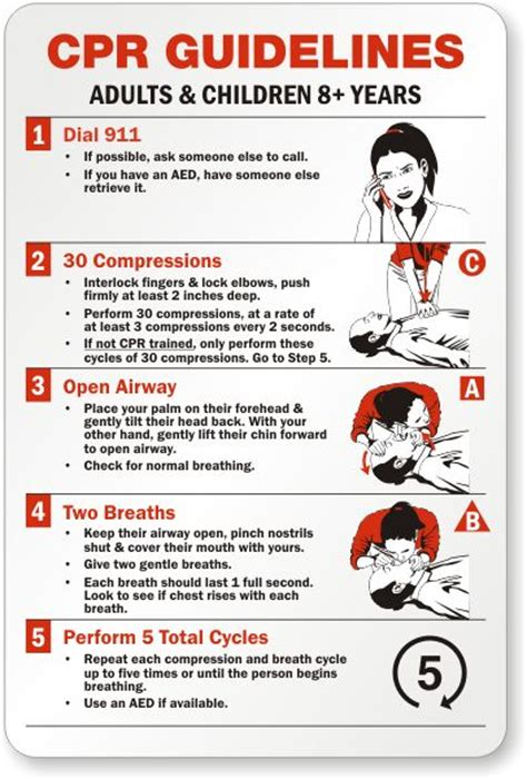printable cpr poster cpr steps google search ems study pinterest first