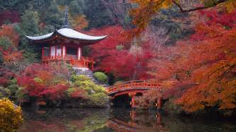 beautiful kyoto gardens japan world for travel