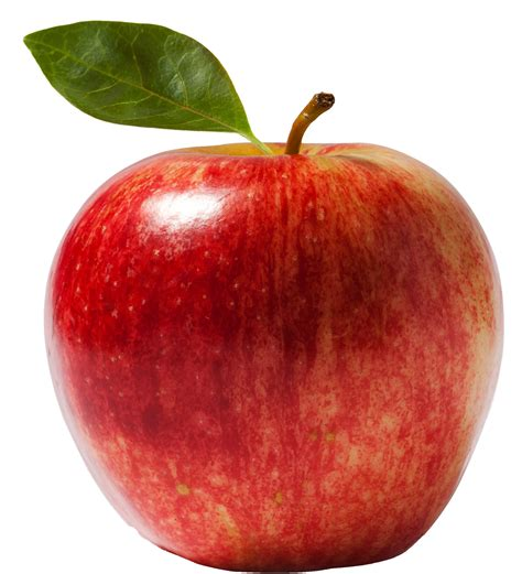 apple wallpaper png apple png image pngpix