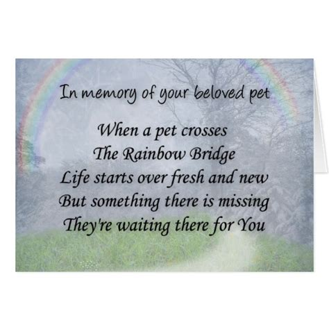 comforting words for loss of a pet card for death quotes quotesgram