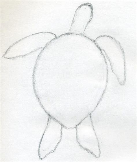 Sketches To Draw Easy by You D Certainly Want To How To Draw A Turtle If You D